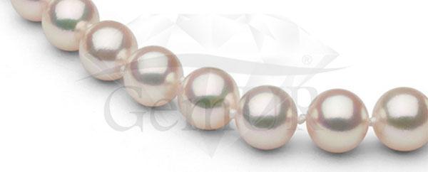 Naszyjnik z japońskich pereł hodowanych Akoya, 9,5 - 10,0 mm
